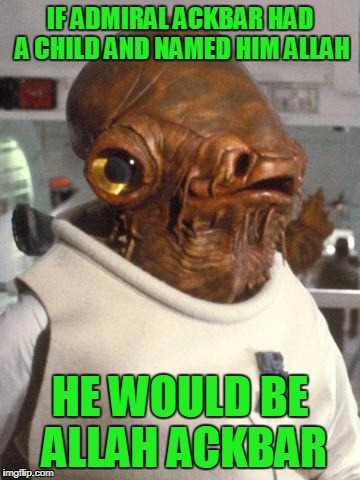 Admiral Ackbar | IF ADMIRAL ACKBAR HAD A CHILD AND NAMED HIM ALLAH HE WOULD BE ALLAH ACKBAR | image tagged in admiral ackbar | made w/ Imgflip meme maker