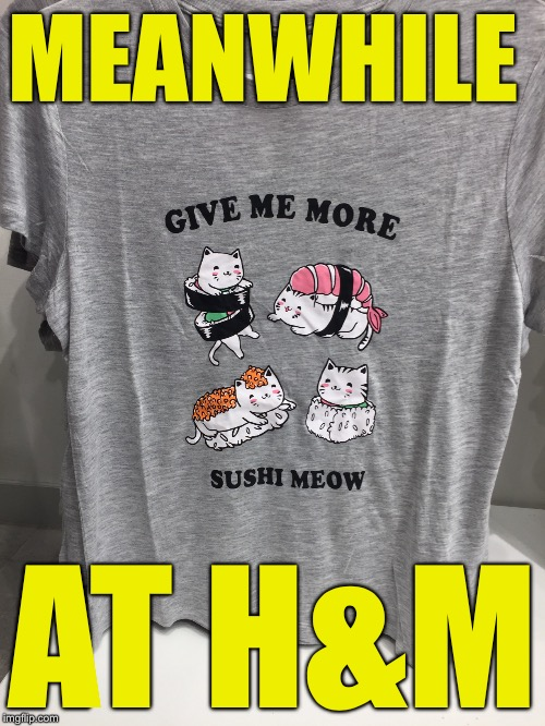 MEANWHILE AT H&M | image tagged in memes,cats,sushi,hm | made w/ Imgflip meme maker
