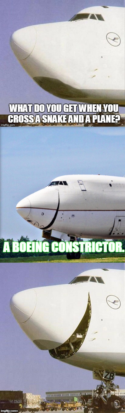 No wonder i never fail a test | WHAT DO YOU GET WHEN YOU CROSS A SNAKE AND A PLANE? A BOEING CONSTRICTOR. | image tagged in just plane jokes | made w/ Imgflip meme maker