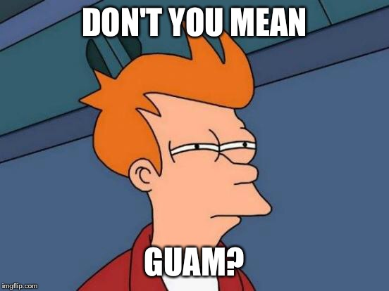 Futurama Fry Meme | DON'T YOU MEAN GUAM? | image tagged in memes,futurama fry | made w/ Imgflip meme maker