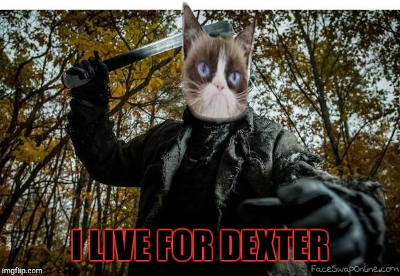 grumpy cat jason | I LIVE FOR DEXTER | image tagged in grumpy cat jason | made w/ Imgflip meme maker