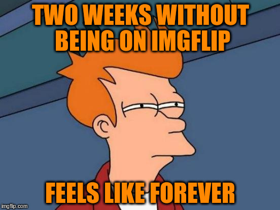 It Felt Longer | TWO WEEKS WITHOUT BEING ON IMGFLIP FEELS LIKE FOREVER | image tagged in memes,futurama fry | made w/ Imgflip meme maker