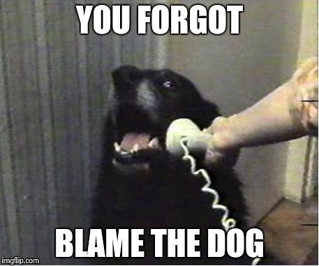 It's for you | YOU FORGOT BLAME THE DOG | image tagged in it's for you | made w/ Imgflip meme maker