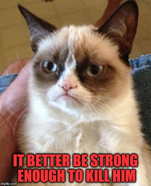 Grumpy Cat Meme | IT BETTER BE STRONG ENOUGH TO KILL HIM | image tagged in memes,grumpy cat | made w/ Imgflip meme maker
