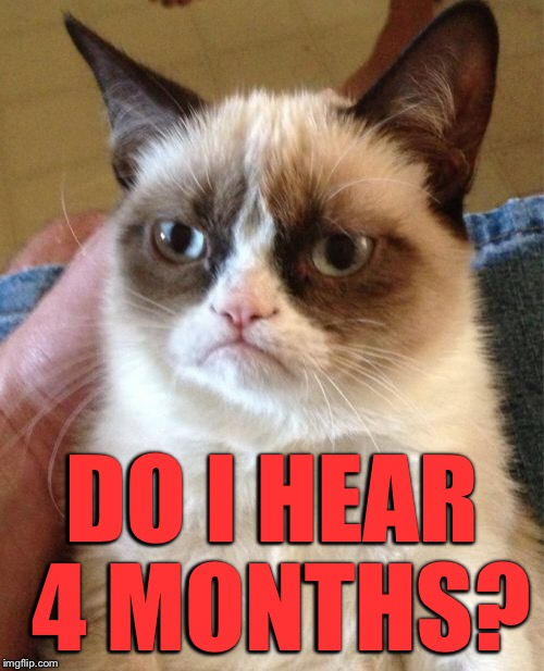 Grumpy Cat Meme | DO I HEAR 4 MONTHS? | image tagged in memes,grumpy cat | made w/ Imgflip meme maker
