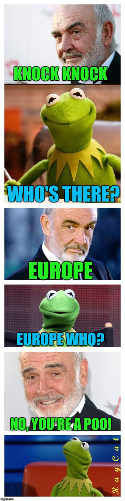 Sean and Kermit | KNOCK KNOCK WHO'S THERE? EUROPE EUROPE WHO? NO, YOU'RE A POO! | image tagged in sean and kermit,memes | made w/ Imgflip meme maker
