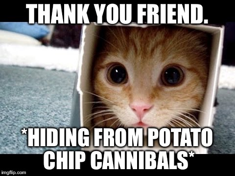 Cat in a Box | THANK YOU FRIEND. *HIDING FROM POTATO CHIP CANNIBALS* | image tagged in cat in a box | made w/ Imgflip meme maker