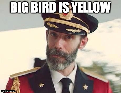 I do say. | BIG BIRD IS YELLOW | image tagged in obvious,meme,ok,sesame,stupid,the rip | made w/ Imgflip meme maker