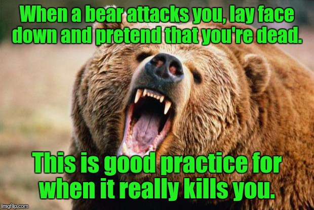 One of the myths about surviving a bear attack.  | When a bear attacks you, lay face down and pretend that you're dead. This is good practice for when it really kills you. | image tagged in bear angry,funny,attack,survival | made w/ Imgflip meme maker