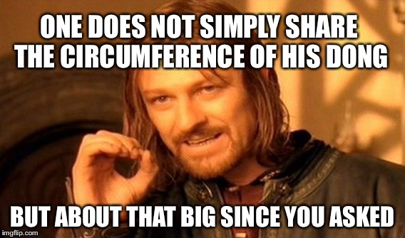 One Does Not Simply...Unless Another Asks | ONE DOES NOT SIMPLY SHARE THE CIRCUMFERENCE OF HIS DONG BUT ABOUT THAT BIG SINCE YOU ASKED | image tagged in memes,one does not simply,dick jokes,dick memes | made w/ Imgflip meme maker