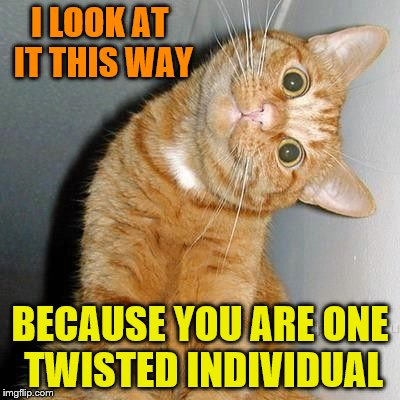 Aren't we all though | I LOOK AT IT THIS WAY BECAUSE YOU ARE ONE TWISTED INDIVIDUAL | image tagged in catstare,memes | made w/ Imgflip meme maker