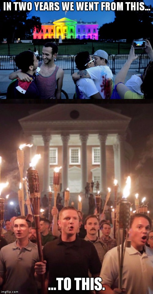 From This to This | IN TWO YEARS WE WENT FROM THIS... ...TO THIS. | image tagged in gay rights,nazis,trump,obama,hell | made w/ Imgflip meme maker