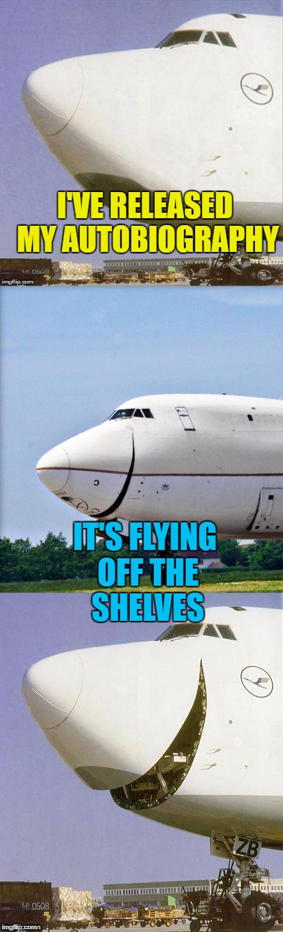 It actually came out at the tail end of last year... :) | I'VE RELEASED MY AUTOBIOGRAPHY IT'S FLYING OFF THE SHELVES | image tagged in just plane jokes,memes,books,autobiography | made w/ Imgflip meme maker