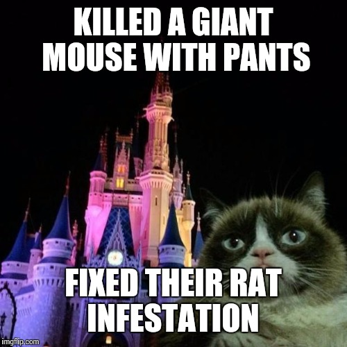 Grumpy's first time at disney | KILLED A GIANT MOUSE WITH PANTS FIXED THEIR RAT INFESTATION | image tagged in grumpy cat disney,funny | made w/ Imgflip meme maker