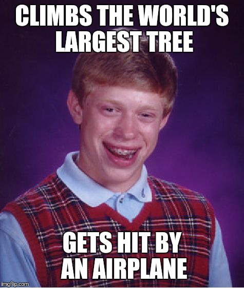 Bad Luck Brian Meme | CLIMBS THE WORLD'S LARGEST TREE GETS HIT BY AN AIRPLANE | image tagged in memes,bad luck brian | made w/ Imgflip meme maker