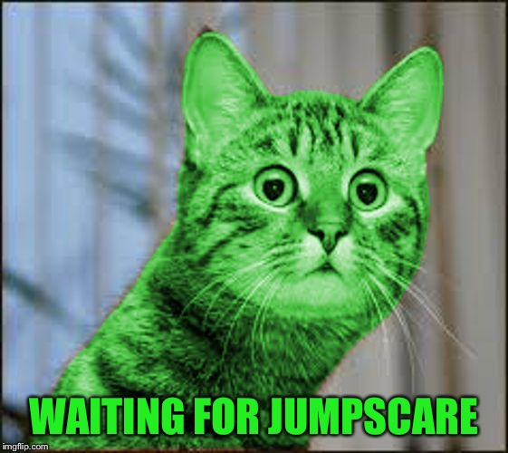 RayCat WTF | WAITING FOR JUMPSCARE | image tagged in raycat wtf | made w/ Imgflip meme maker