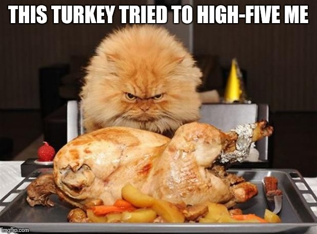 THIS TURKEY TRIED TO HIGH-FIVE ME | made w/ Imgflip meme maker