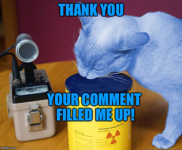 RayCat eating | THANK YOU YOUR COMMENT FILLED ME UP! | image tagged in raycat eating | made w/ Imgflip meme maker