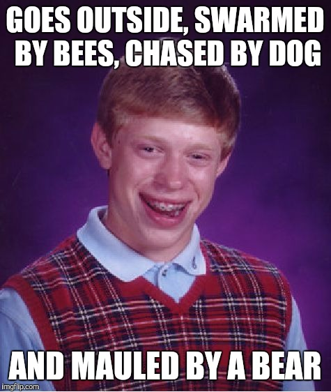Bad Luck Brian Meme | GOES OUTSIDE, SWARMED BY BEES, CHASED BY DOG AND MAULED BY A BEAR | image tagged in memes,bad luck brian | made w/ Imgflip meme maker