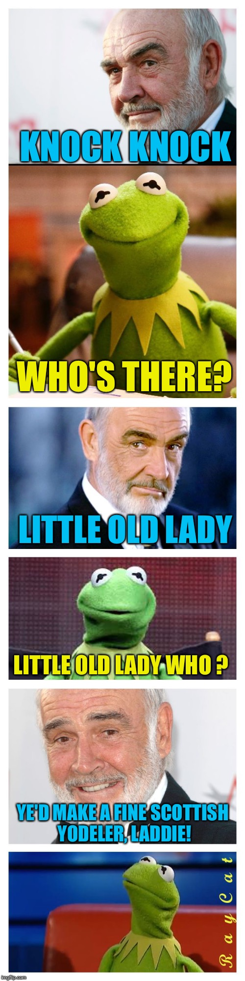 Sean and Kermit | KNOCK KNOCK WHO'S THERE? LITTLE OLD LADY LITTLE OLD LADY WHO ? YE'D MAKE A FINE SCOTTISH YODELER, LADDIE! | image tagged in sean and kermit,memes,knock knock,yodeling | made w/ Imgflip meme maker