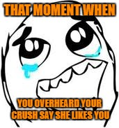 Tears Of Joy | THAT MOMENT WHEN YOU OVERHEARD YOUR CRUSH SAY SHE LIKES YOU | image tagged in memes,tears of joy | made w/ Imgflip meme maker