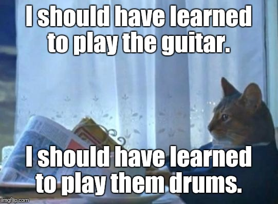 I should have learned to play the guitar. I should have learned to play them drums. | made w/ Imgflip meme maker