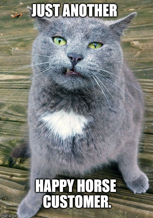 Smiley Cat | JUST ANOTHER HAPPY HORSE CUSTOMER. | image tagged in smiley cat | made w/ Imgflip meme maker