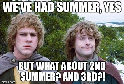 Second Breakfast | WE'VE HAD SUMMER, YES BUT WHAT ABOUT 2ND SUMMER? AND 3RD?! | image tagged in second breakfast | made w/ Imgflip meme maker