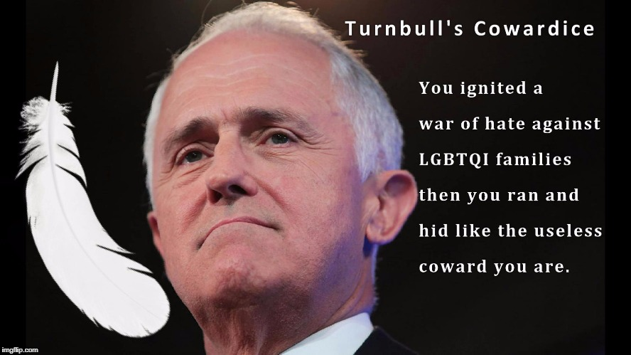 image tagged in marriage equality,lgbtqi,lgbt,lgbtq,malcolm turnbull | made w/ Imgflip meme maker