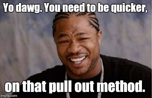 Yo Dawg Heard You Meme | Yo dawg. You need to be quicker, on that pull out method. | image tagged in memes,yo dawg heard you | made w/ Imgflip meme maker