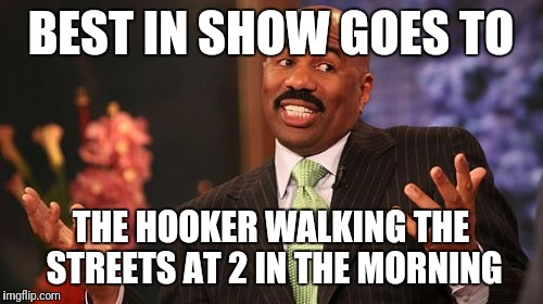 Steve Harvey Meme | BEST IN SHOW GOES TO THE HOOKER WALKING THE STREETS AT 2 IN THE MORNING | image tagged in memes,steve harvey | made w/ Imgflip meme maker