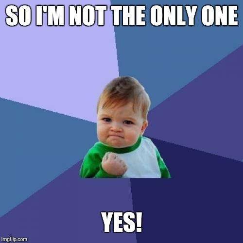 Success Kid Meme | SO I'M NOT THE ONLY ONE YES! | image tagged in memes,success kid | made w/ Imgflip meme maker