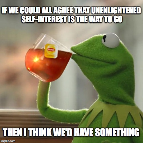 I think we're getting there. | IF WE COULD ALL AGREE THAT UNENLIGHTENED SELF-INTEREST IS THE WAY TO GO THEN I THINK WE'D HAVE SOMETHING | image tagged in memes,but thats none of my business,kermit the frog,kermit | made w/ Imgflip meme maker