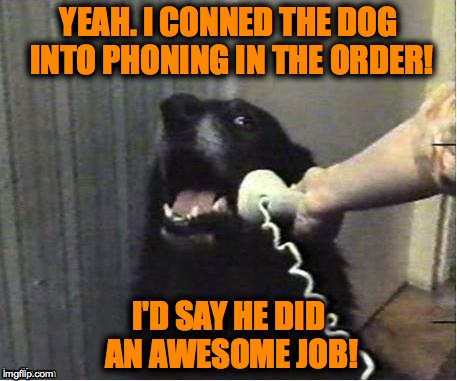 YEAH. I CONNED THE DOG INTO PHONING IN THE ORDER! I'D SAY HE DID AN AWESOME JOB! | made w/ Imgflip meme maker