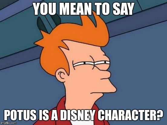 Futurama Fry Meme | YOU MEAN TO SAY POTUS IS A DISNEY CHARACTER? | image tagged in memes,futurama fry | made w/ Imgflip meme maker