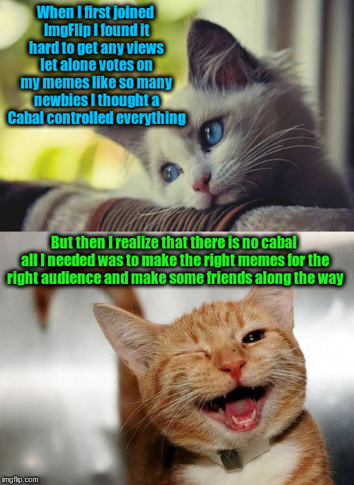 Just sharing my experiences as a newbie | When I first joined ImgFlip I found it hard to get any views let alone votes on my memes like so many newbies I thought a Cabal controlled e | image tagged in sad happy cat,memes,imgflip,newbie | made w/ Imgflip meme maker
