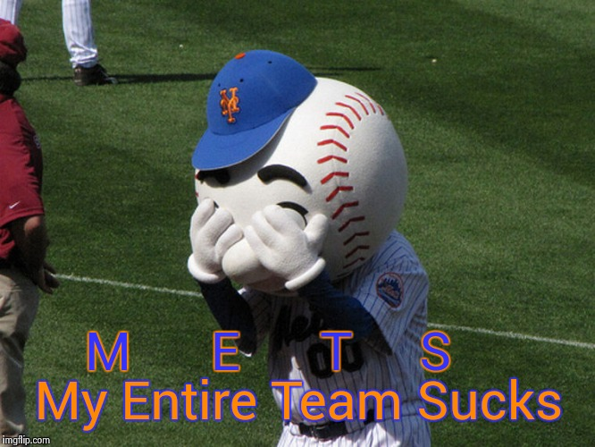 Mr. Met | M      E      T     S My Entire Team Sucks | image tagged in mr met | made w/ Imgflip meme maker