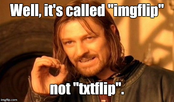 "One Does Not Simply Meme | Well, it's called ""imgflip"" not ""txtflip"". 