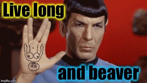 Ideas that didn't pass the NBC censors in the 1960's | Live long and beaver | image tagged in spock/live long,memes,evilmandoevil,star trek,funny | made w/ Imgflip meme maker