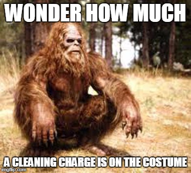 bigfoot | WONDER HOW MUCH A CLEANING CHARGE IS ON THE COSTUME | image tagged in bigfoot | made w/ Imgflip meme maker