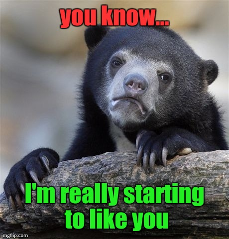 Confession Bear Meme | you know... I'm really starting to like you | image tagged in memes,confession bear | made w/ Imgflip meme maker