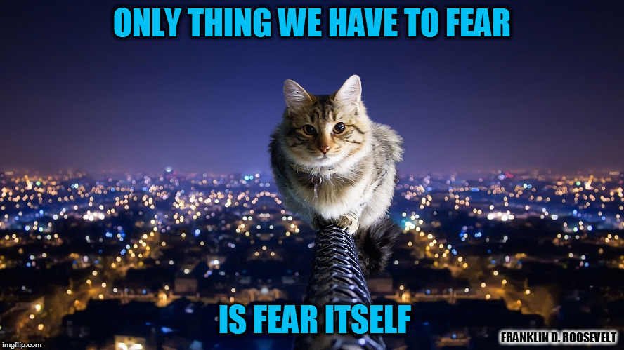 ONLY THING WE HAVE TO FEAR IS FEAR ITSELF FRANKLIN D. ROOSEVELT | made w/ Imgflip meme maker