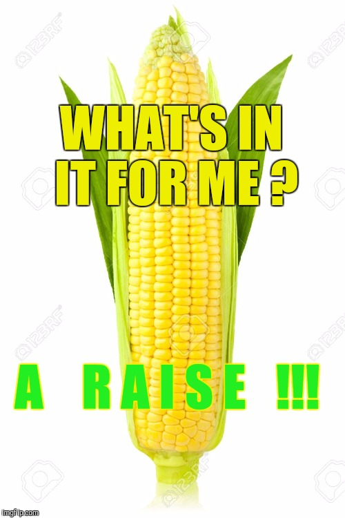 Memes, Corn | WHAT'S IN IT FOR ME ? A    R A I S E   !!! | image tagged in memes,corn | made w/ Imgflip meme maker