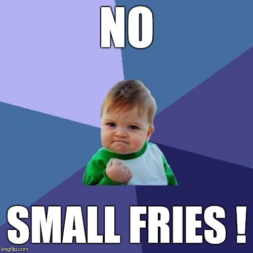 Success Kid Meme | NO SMALL FRIES ! | image tagged in memes,success kid | made w/ Imgflip meme maker