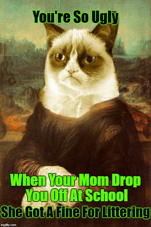 ᴏᴏᴘs! | You're So Ugly When Your Mom Drop You Off At School She Got A Fine For Littering | image tagged in grumpy cat 1,grumpy cat,grumpy cat insults,google images,craziness_all_the_way | made w/ Imgflip meme maker