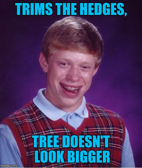 Bad Luck Brian Meme | TRIMS THE HEDGES, TREE DOESN'T LOOK BIGGER | image tagged in memes,bad luck brian | made w/ Imgflip meme maker