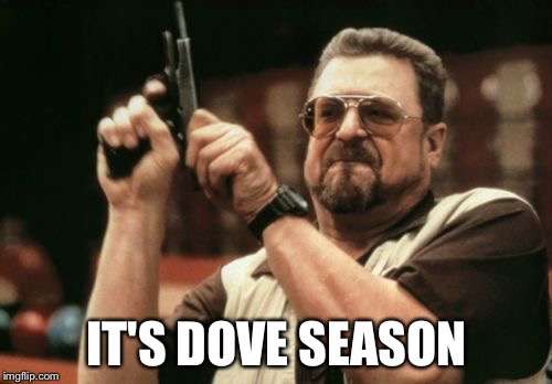 Am I The Only One Around Here Meme | IT'S DOVE SEASON | image tagged in memes,am i the only one around here | made w/ Imgflip meme maker