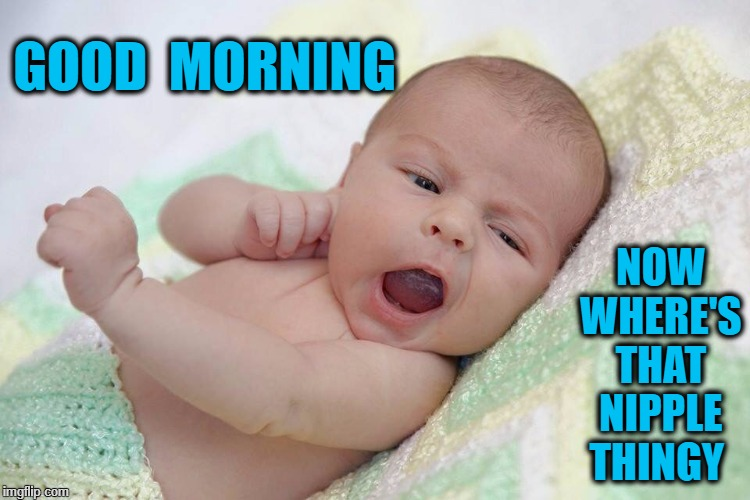 Babies | GOOD  MORNING NOW  WHERE'S  THAT  NIPPLE  THINGY | image tagged in babies | made w/ Imgflip meme maker