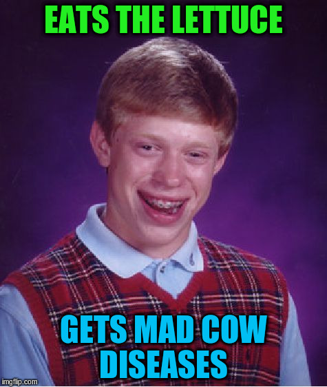 Bad Luck Brian Meme | EATS THE LETTUCE GETS MAD COW DISEASES | image tagged in memes,bad luck brian | made w/ Imgflip meme maker