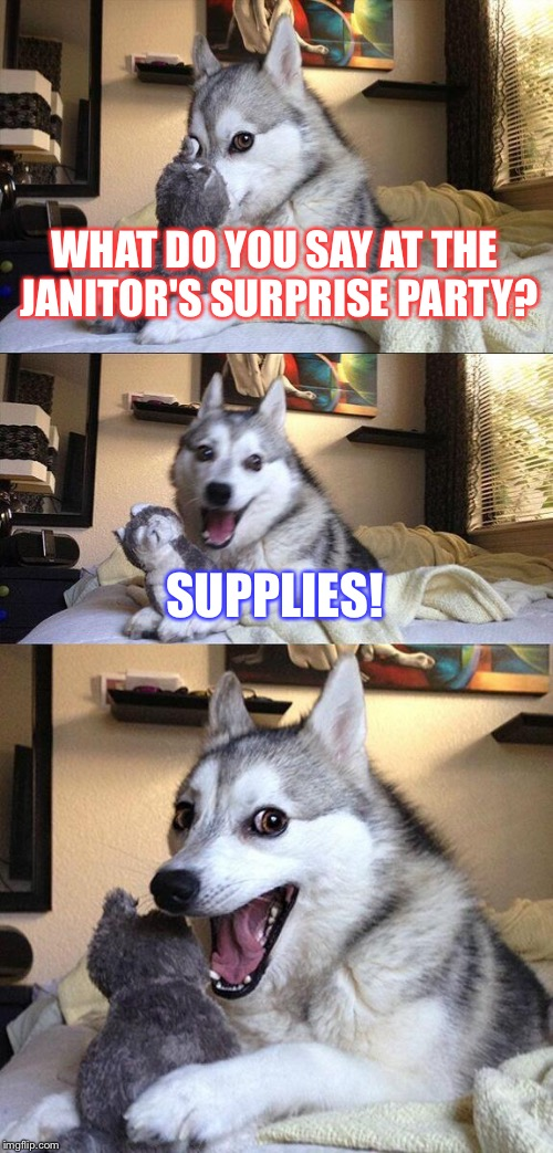 Bad Pun Dog Meme | WHAT DO YOU SAY AT THE JANITOR'S SURPRISE PARTY? SUPPLIES! | image tagged in memes,bad pun dog | made w/ Imgflip meme maker